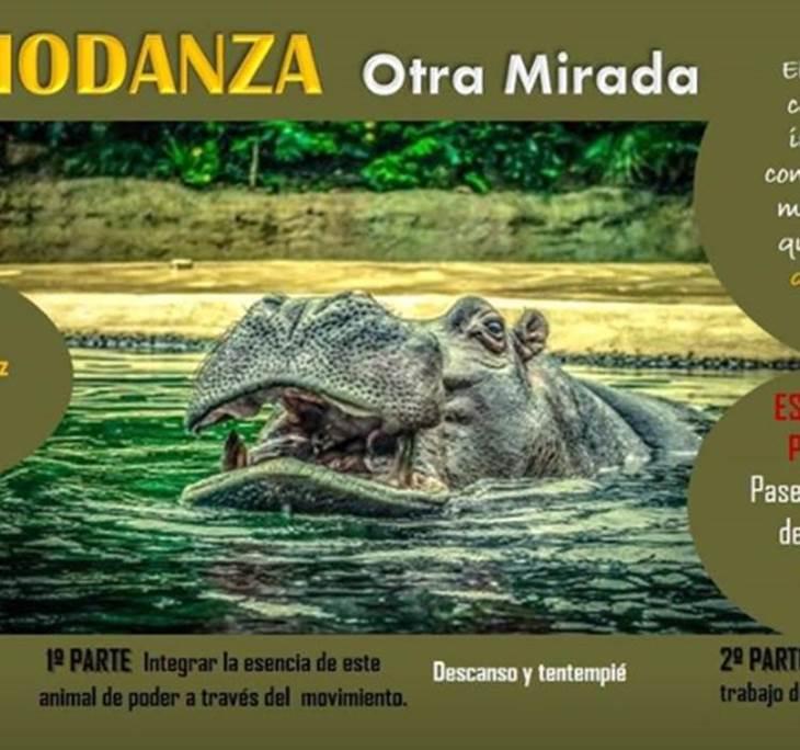 Biodanza OTRA Mirada - pic0
