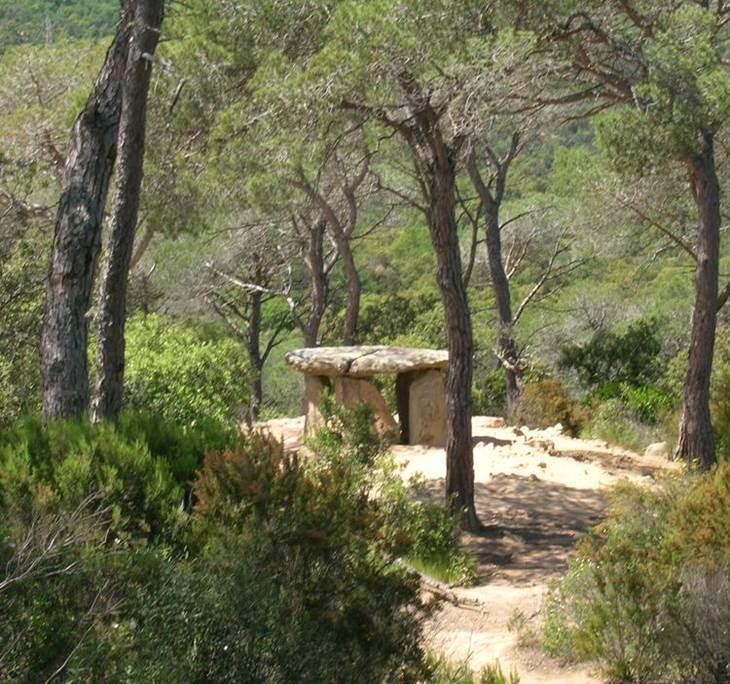 Caminada de comiat de la tardor a Vallgorguina - pic0