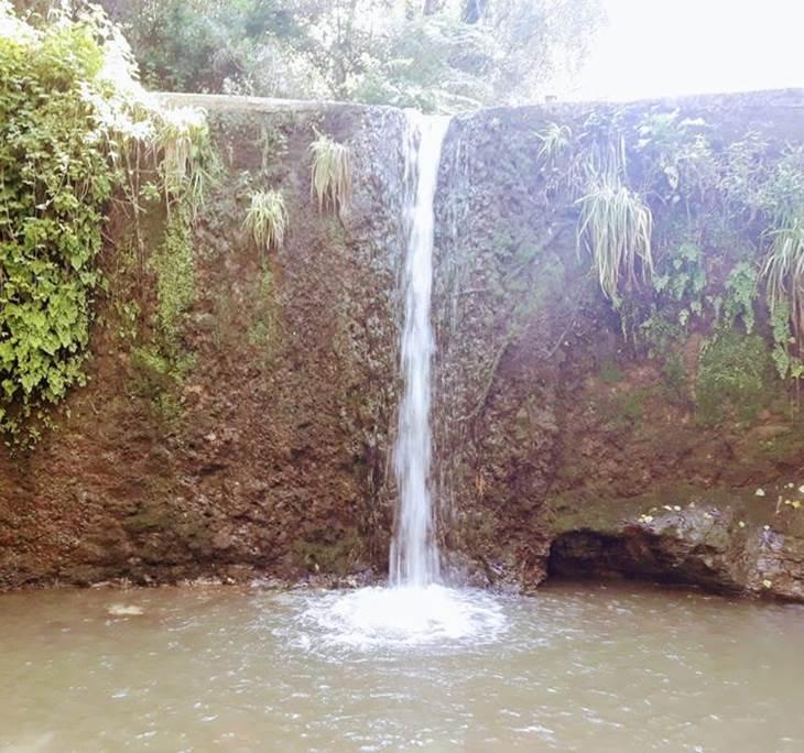 Camins d'aigua: la rierada anada i tornada - pic0