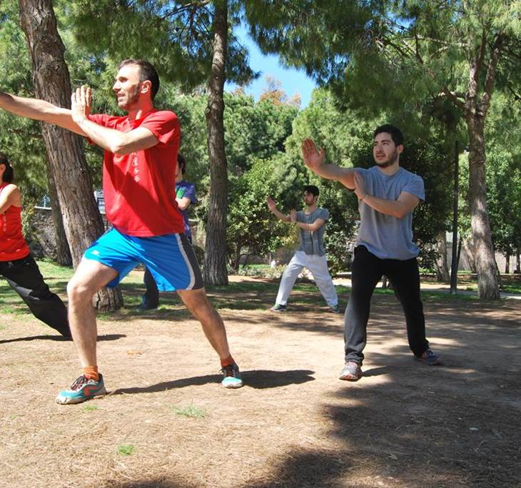 clase de kung fu tradicional. - pic0