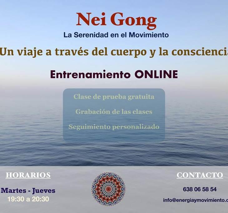 Clase de Nei Gong (ON-LINE) - pic0