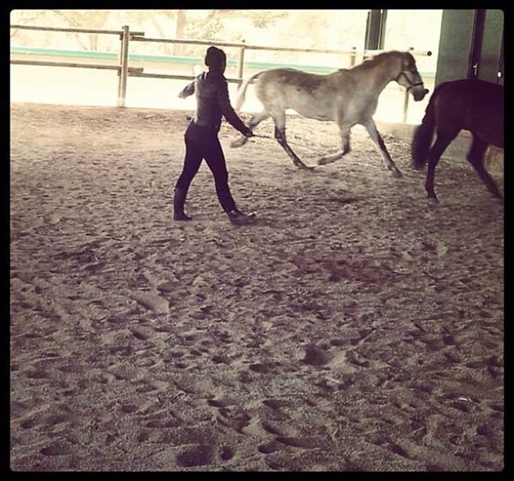 Coaching con Caballos - pic1