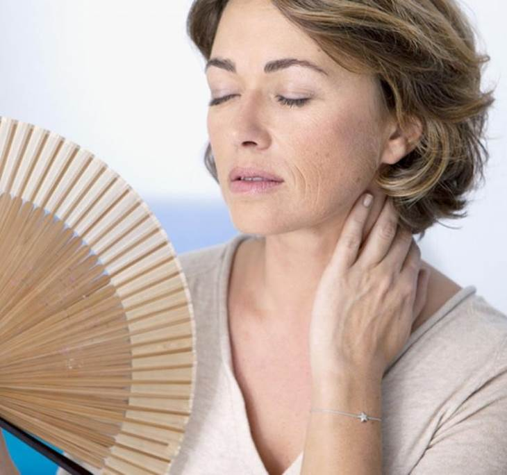 Menopausia para principiantes - pic0