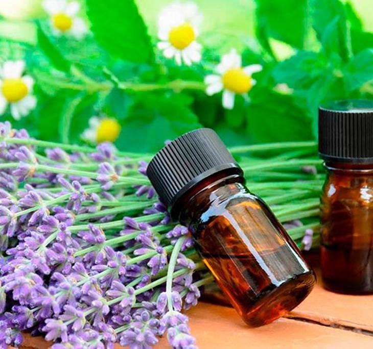 Curso iniciación a la terapia floral - pic0