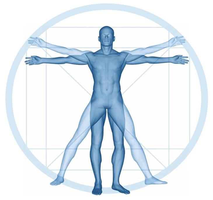 de Reconocimiento Muscular gratuito - pic0