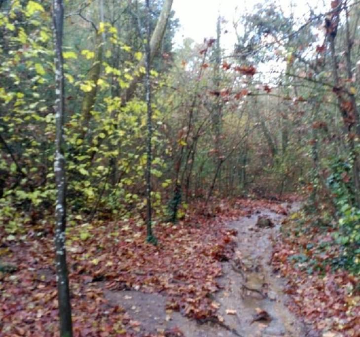Caminada de tres torrents i un riu - pic0