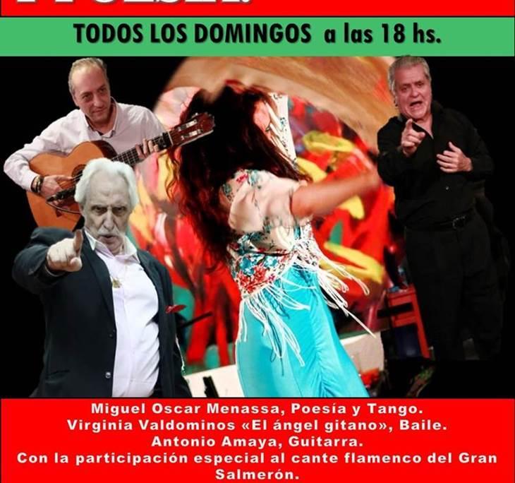 Espectáculo: Flamenco, tango y poesía - pic0