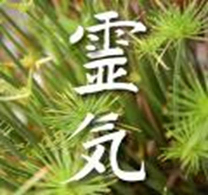 Jornada de Intercambio de Reiki Usui Tibetano - pic0