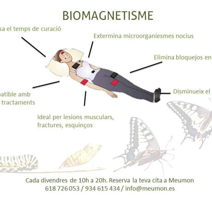 KINESIOLOGIA, PNL, BIOMAGNETISMO - pic0