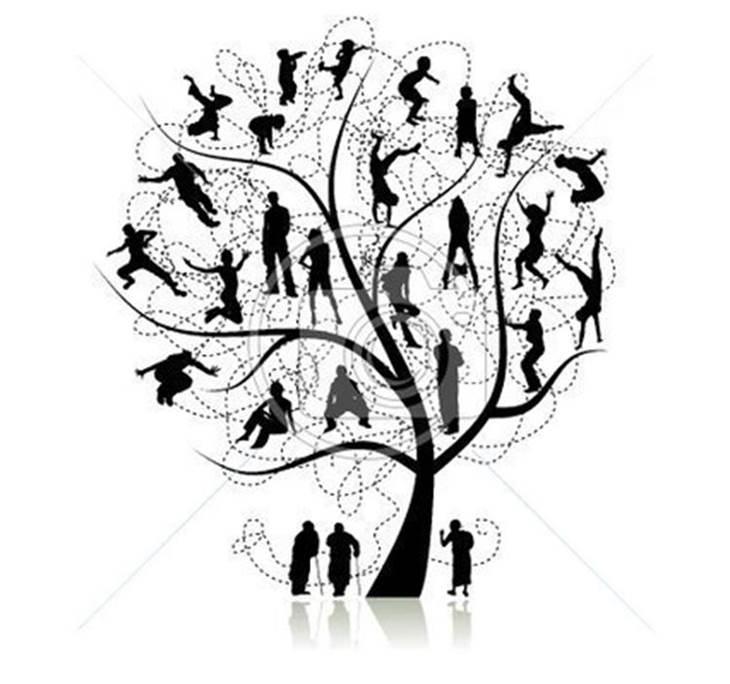 La clave de tu poder personal: Biodescodificación - pic0
