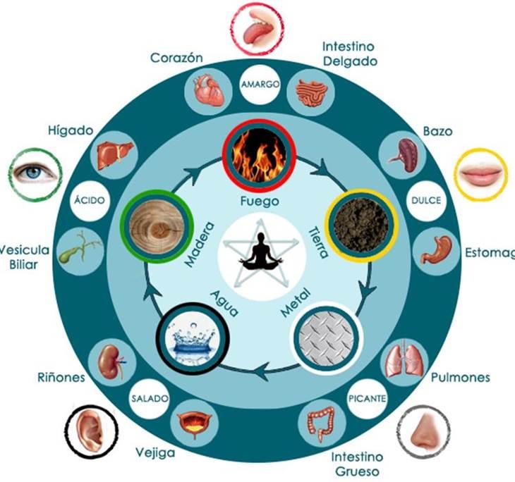 Clase la rueda de los 5 elementos degustaci n uolala for Elementos del feng shui y su significado