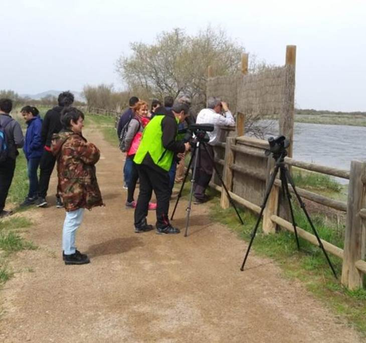 LAGUNAS MANCHEGAS Ornitologia Observacion de aves - pic6