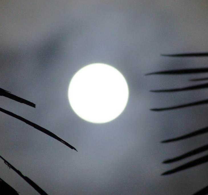 Meditació de lluna plena - pic6