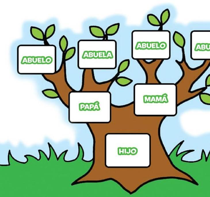 charla sanando la relación con tu árbol genealógico uolala