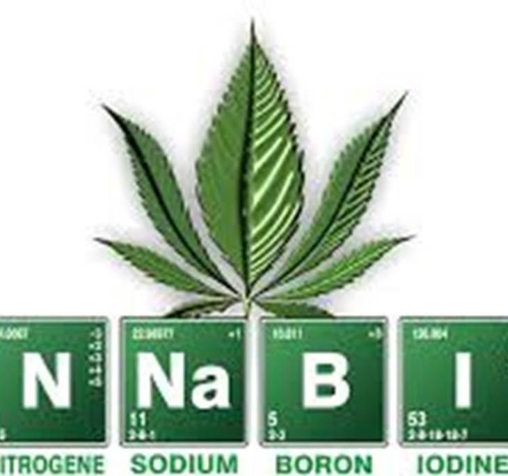 Cannabis terapéutico y el cuidado de la piel - pic0