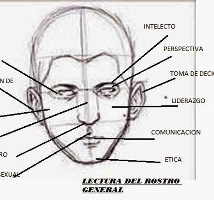 MORFOPSICOLOGÍA: ¿Qué dice tu cara? - pic1