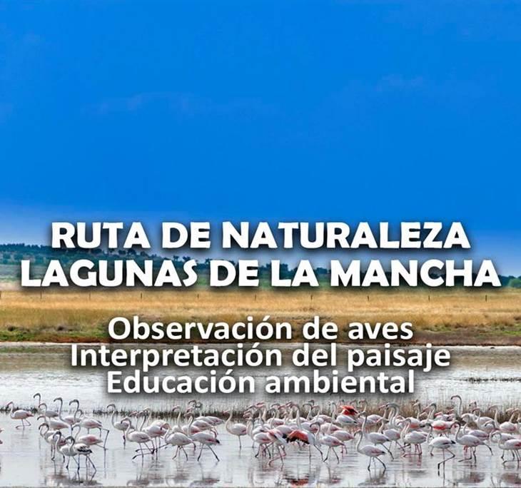 LAGUNAS MANCHEGAS Ornitologia Observación de aves - pic0
