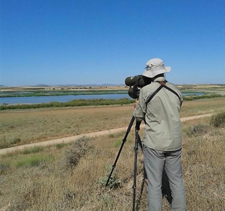 LAGUNAS MANCHEGAS Ornitologia Observación de aves - pic3