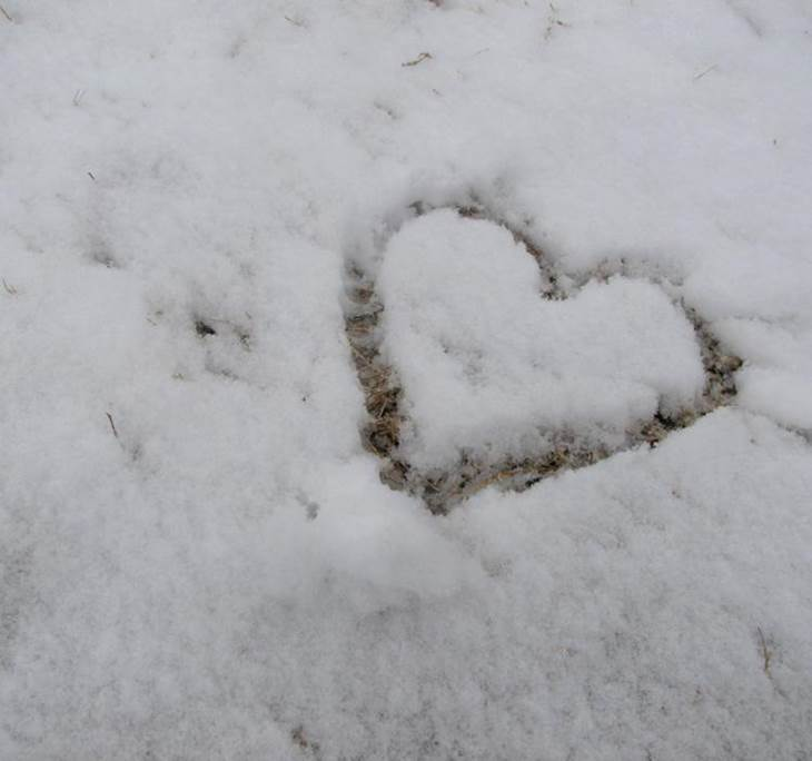 Ofrenda al Amor - pic0