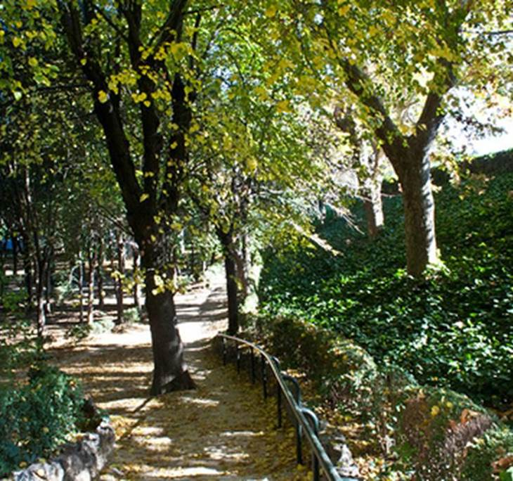 Por los parques de Madrid: Quinta de los Molinos - pic0