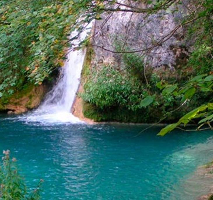 Selva de Irati, El mayor Hayedo de España - pic1
