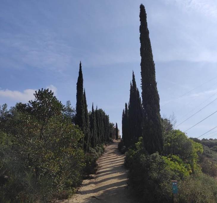 Sierra de la Marina, Sant Jeroni de la Murtra - pic4