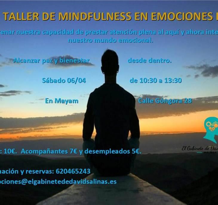 Taller de Mindfulness en Emociones II - pic0