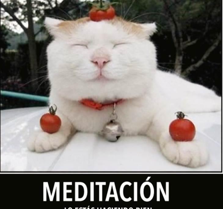 TALLER DE RELAJACIÓN Y MEDITACIÓN - pic0